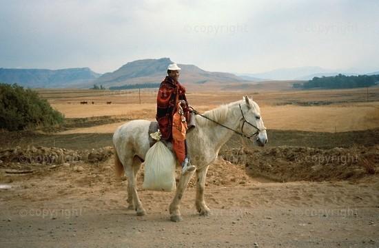 Traveller on horse