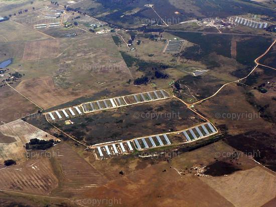 Patchwork Boland Farms