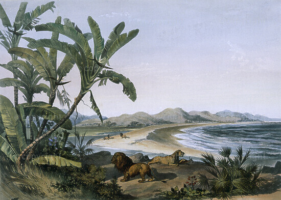 Mouth of the Imvoti River on the Indian Ocean, 1849