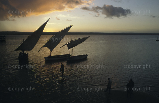 Dhows at sunset, Inhambane, Mozambique