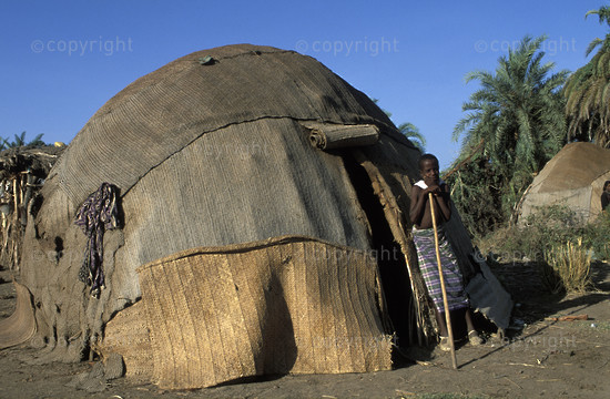 Afar(or Danakil) homestead, Assaita, Ethiopia2