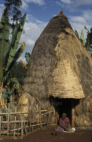 Dorze huts are up to 5m high. Cotton spinning,Chencha,Ethiopia